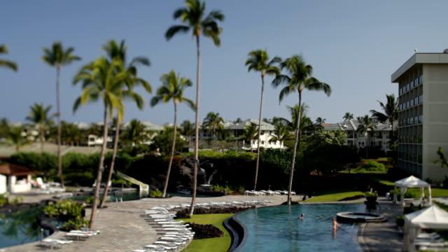 vídeos de stock, filmes e b-roll de piscina tropical do hotel e palmeiras - lago infinito