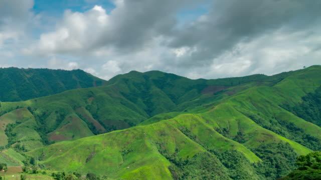 tropical rain forest on mountain - sundog stock videos & royalty-free footage