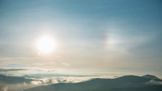 tropical rain forest trees with sun dogs in the sky - sundog stock videos & royalty-free footage