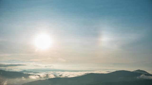 vídeos de stock, filmes e b-roll de árvores da floresta tropical com cães do sol no céu - parélio