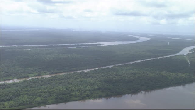 Tropical rainforest in River Amazon catchment area  River flowing through forest   Zoom back Wide Shot  Aerial Shot