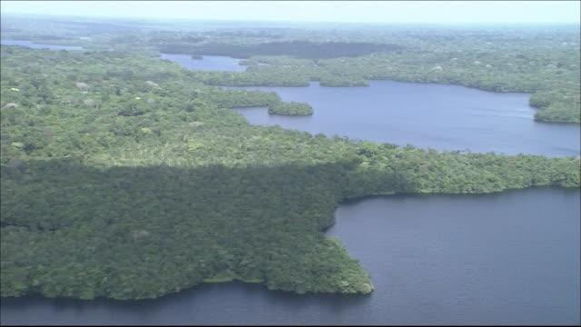 vidéos et rushes de tropical rainforest in river amazon catchment area  river flowing through forest  medium shot  aerial shot - angle de prise de vue