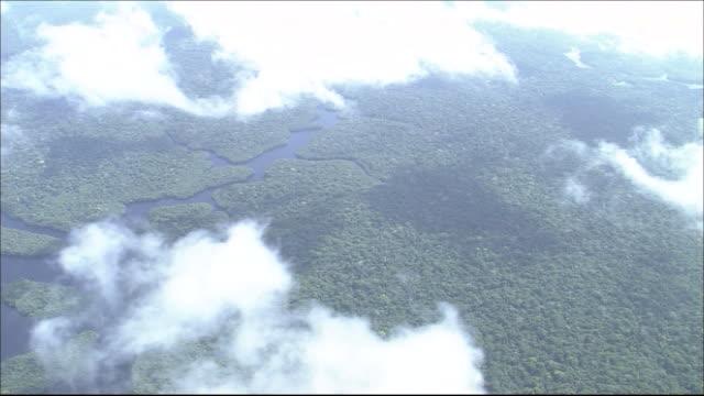 vidéos et rushes de tropical rainforest in river amazon catchment area  river flowing through forest  white clouds in sky wide shot  aerial shot - angle de prise de vue