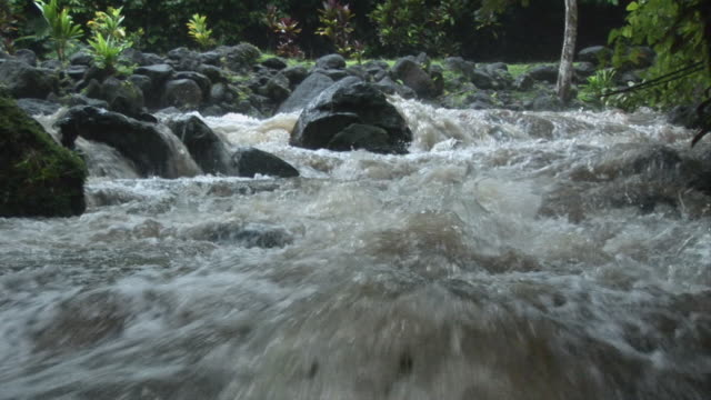 cu, tropical river rapids, tahiti, french polynesia - french overseas territory stock videos & royalty-free footage