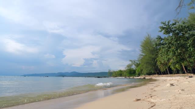 vídeos y material grabado en eventos de stock de mar tropical y playa contra el cielo azul - árbol tropical