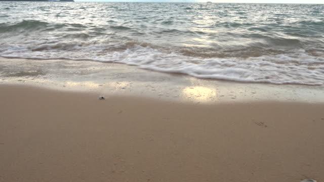 vídeos y material grabado en eventos de stock de puesta de sol tropical playa de arena - mar de andamán
