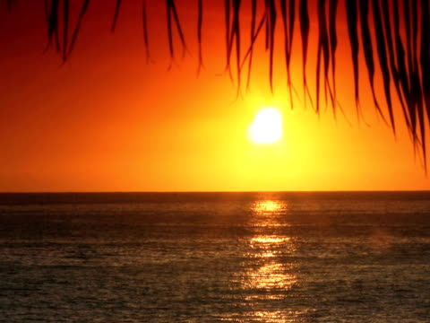 ntsc: tropical sunset - other stock videos & royalty-free footage
