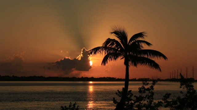 tropical sunset - the florida keys stock videos & royalty-free footage