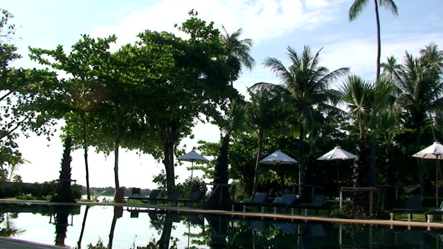 vídeos de stock, filmes e b-roll de piscina tropical - estação turística