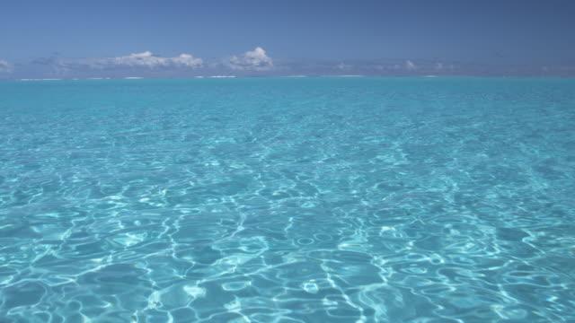 pov ws tropical water, bora bora, society islands, french polynesia - bora bora stock videos and b-roll footage