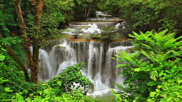 Tropical Waterfall in Forest