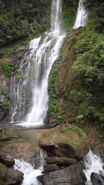 HD tropical waterfall vertical