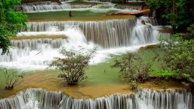vidéos et rushes de cascade tropicale zoom et panoramique avec longue exposition technique time-lapse - arbre tropical