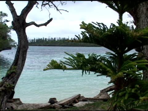 tropischen wasser - südpazifik stock-videos und b-roll-filmmaterial