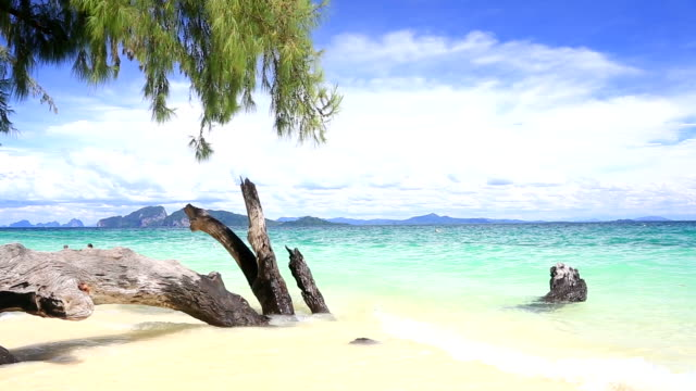 stockvideo's en b-roll-footage met tropical white sand beach andaman sea at trang thailand dolly - thailand