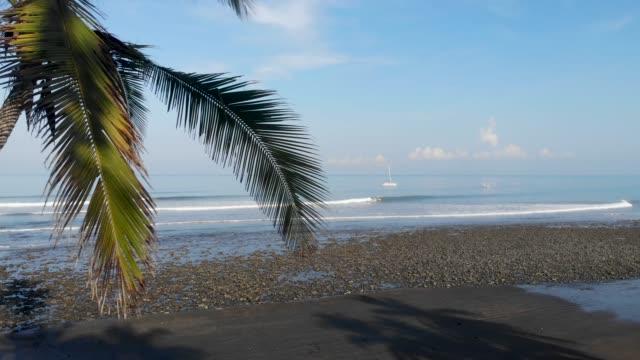 tropocal strand