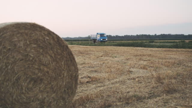 ms truck driving along rural hay field - hay isolated stock videos & royalty-free footage