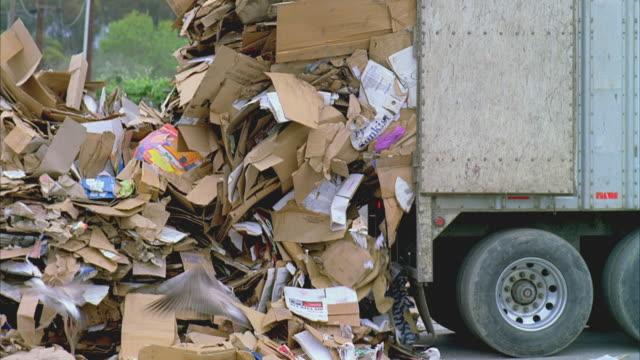 vídeos y material grabado en eventos de stock de ms truck dumping heaps of cardboard, santa barbara, california, usa  - cartón