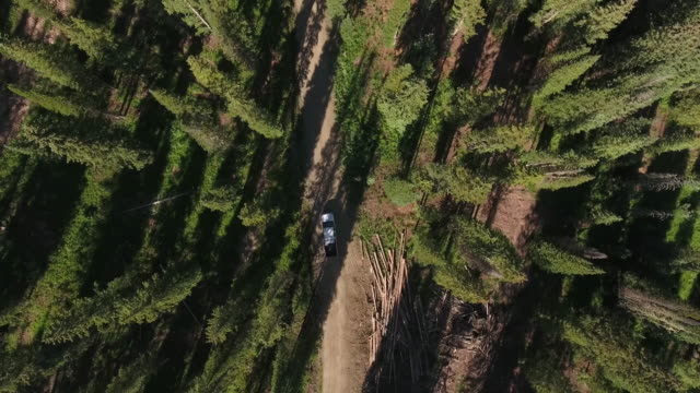 truck follow looking down lower,rocky mountains reveal fall colors lake reflection, off road, rzr wildlife, foliage short aerial, 4k, 55s, stock video sale - drone discoveries - drone aerial view - pickup bildbanksvideor och videomaterial från bakom kulisserna