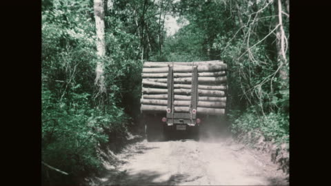 ws pov truck loaded with wooden logs moving on dirt track / united states - log stock videos & royalty-free footage