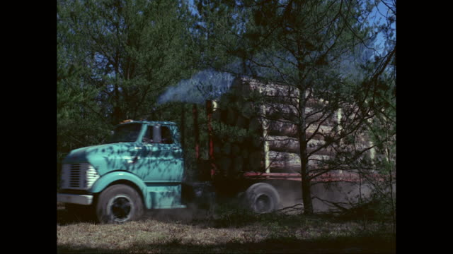 ws truck loaded with wooden logs moving on road / united states - holzstamm stock-videos und b-roll-filmmaterial