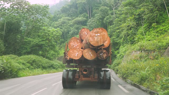truck transporting wood on a country road in congo, africa - 木材産業点の映像素材/bロール