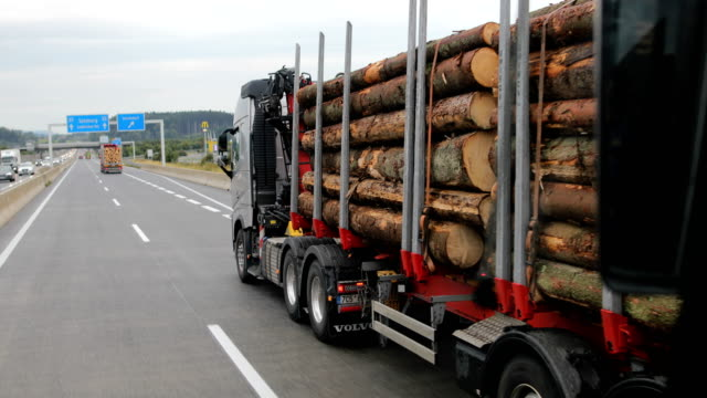 truck transporting wood - industria forestale video stock e b–roll