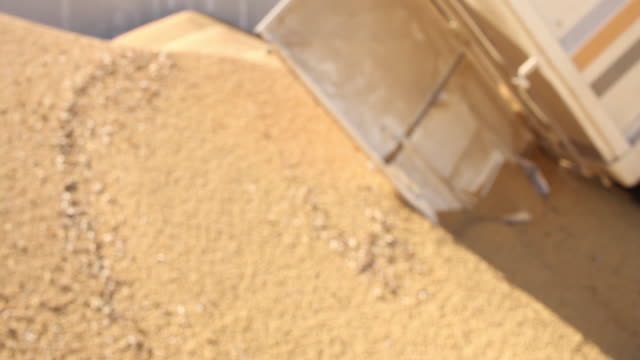 truck unloading soybeans - soya bean stock videos & royalty-free footage