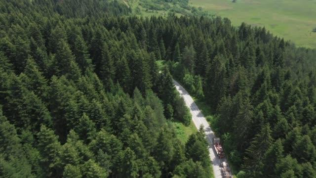 vidéos et rushes de camion - industrie du bois