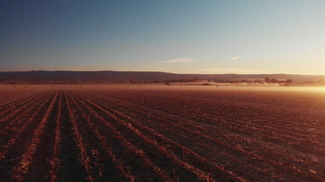 vídeos de stock e filmes b-roll de a trucking back aerial drone shot of a dusty corn field at sunset with tractors and mountains in the background in western colorado under a clear, blue sky - campo