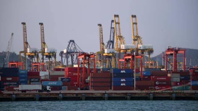 trucks at sea container box terminal. - box container video stock e b–roll