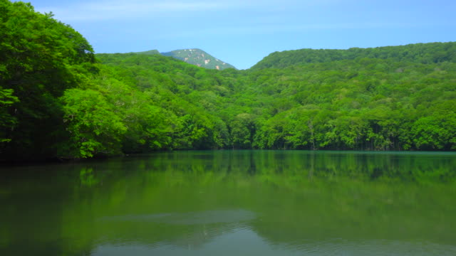 tsuta-numa pond in aomori, japan - aomori prefecture stock videos & royalty-free footage