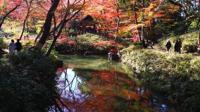 Tsutsuji Cyaya (Tea House) is surrounded by autumn leaves trees and reflects to the pond in Rikugien Garden (Traditional Japanese Garden) Bunkyo-ku Tokyo on December 03 2017.