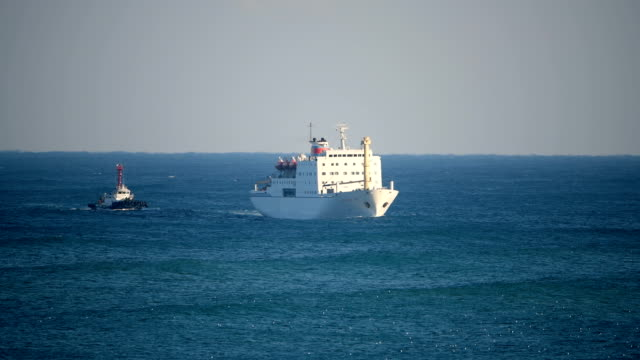 tug guides a north korean ship carrying north korea's samjiyon art troupe as it arrives at mukho port on february 6, 2018 in donghae, south korea.... - south pacific ocean点の映像素材/bロール