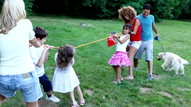 tug of war - mixed race person stock videos & royalty-free footage