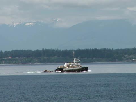 vídeos de stock, filmes e b-roll de ws, tugboat on puget sound, seattle, washington state, usa - pacífico norte