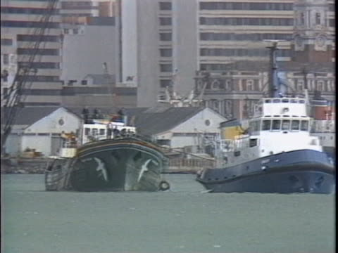 tugboat pulling rainbow warrior through auckland harbor - environment or natural disaster or climate change or earthquake or hurricane or extreme weather or oil spill or volcano or tornado or flooding stock videos & royalty-free footage