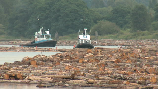 Tugboats and Log Booms