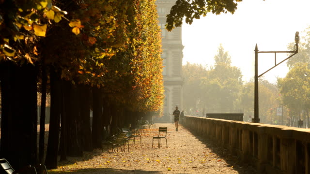 tuileries morning - paris france stock videos & royalty-free footage