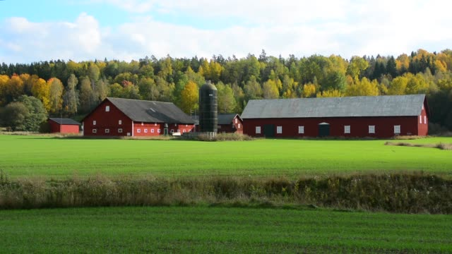 vidéos et rushes de tumba sweden rural farming dairy with barn and home in green fields in fall colors - salle de traite