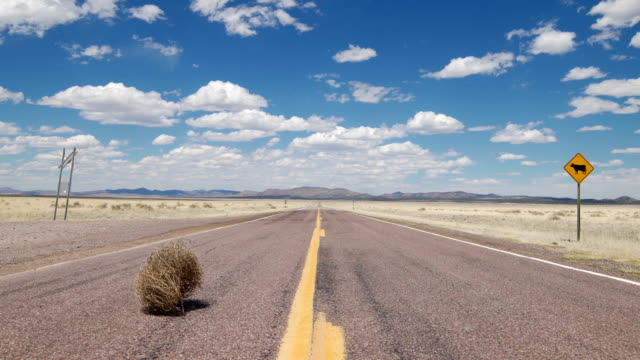 tumbleweed rolling on a rural highway - middle of the road stock videos & royalty-free footage