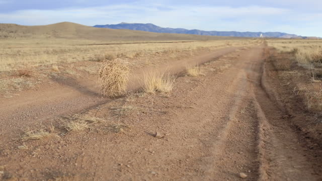 tumbleweed - drought stock videos and b-roll footage