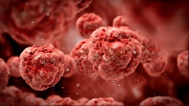 Tumor cells float through blood.