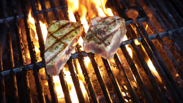 vídeos de stock e filmes b-roll de tuna steaks - atum peixe