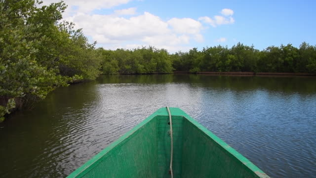 tunas de zaza, cuba, navigating in the river zaza - sancti spiritus province stock videos and b-roll footage