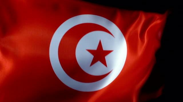 tunisia flag flapping - tunisia stock videos & royalty-free footage