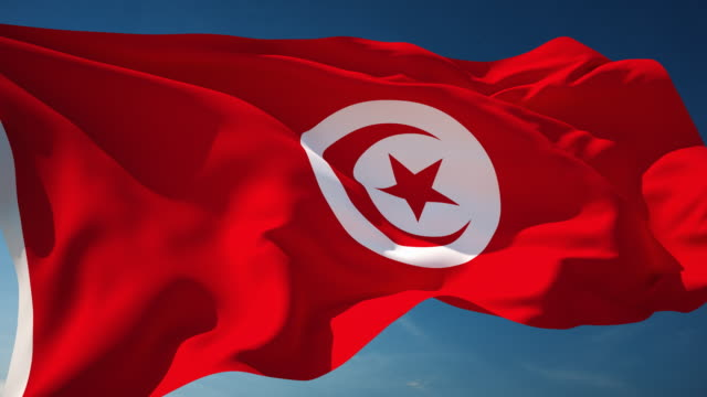 tunisia flag - loopable - tunisia video stock e b–roll