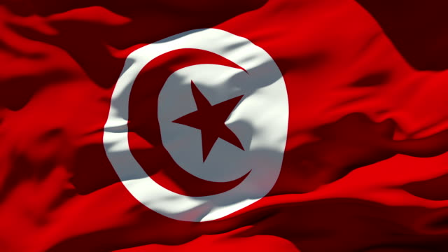 bandiera della tunisia - tunisia video stock e b–roll