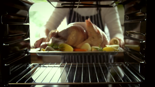 turkey roasting in the oven - 4k video - turkey stock videos and b-roll footage