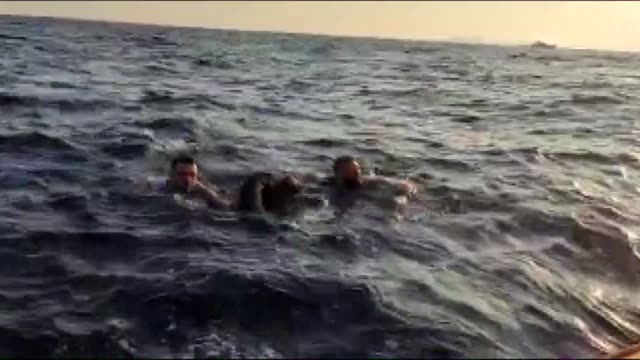 turkish coast guard on friday saved over a dozen of irregular migrants illegally attempting to cross into europe through the aegean sea according to... - flüchtling stock-videos und b-roll-filmmaterial